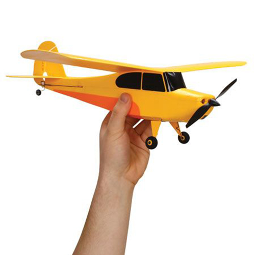 Champ RTF RC Plane
